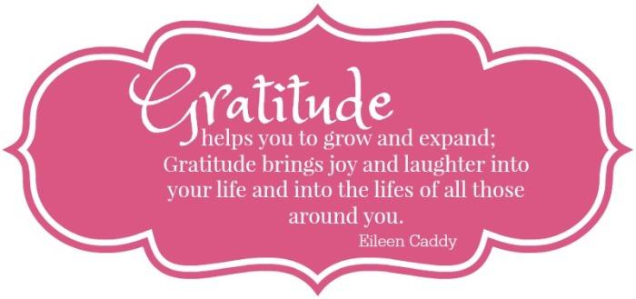 Gratitude shield